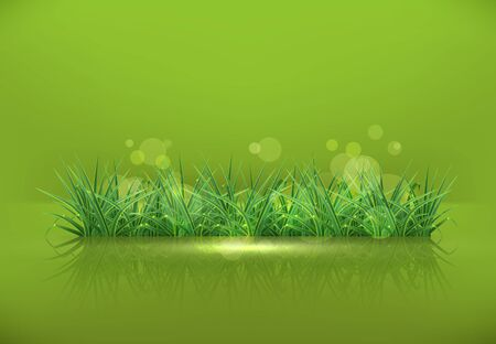 sedge: Grass Illustration