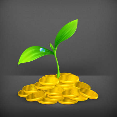 Plant and coins Vector