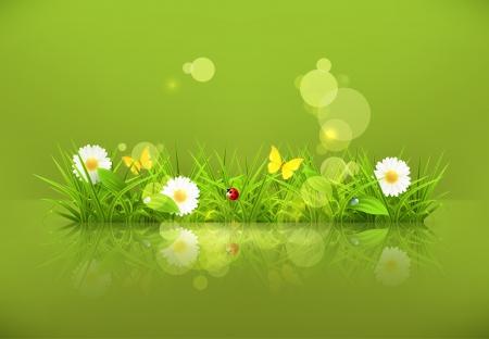 sedge: Green grass