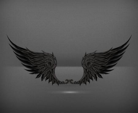 raven: Wings black