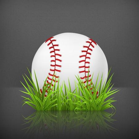 Baseball on grass Stock Vector - 19474817