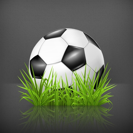 Soccer ball on grass Stock Vector - 19474841