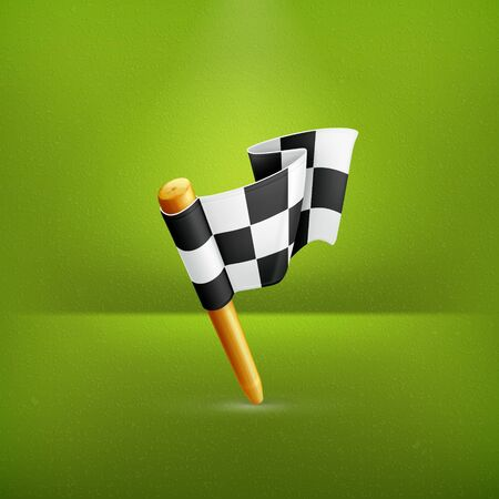 Checkered flag icon Stock Vector - 19474572