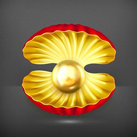 ostra: Perla de oro Vectores
