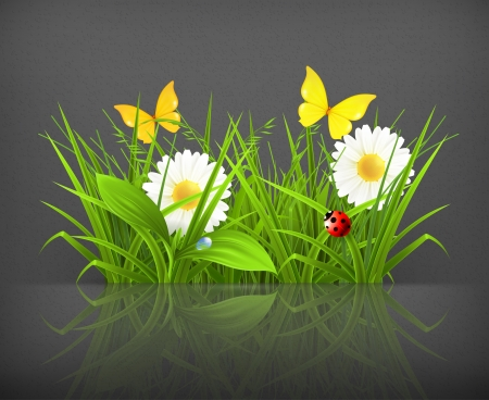 sedge: Spring grass Illustration