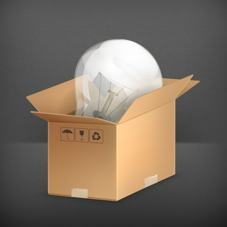 Light bulb in box Vector Illustration