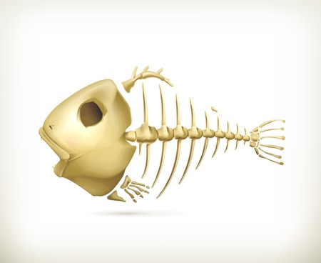 3,121 Skeleton Fish Cliparts, Stock Vector And Royalty Free Skeleton ...