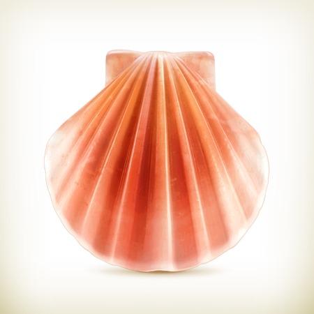 Seashell icoon Stockfoto - 22197545