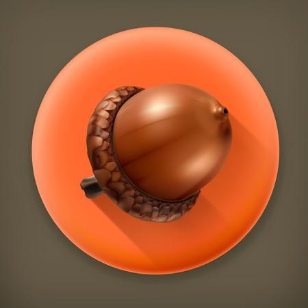 acorn seed: Acorn, long shadow vector icon