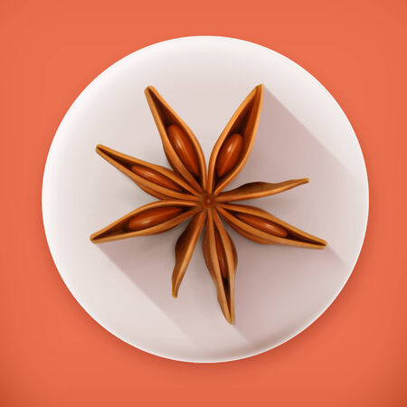 star anise: Anise, long shadow vector icon