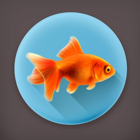 ichthyology: Goldfish long shadow icon Illustration