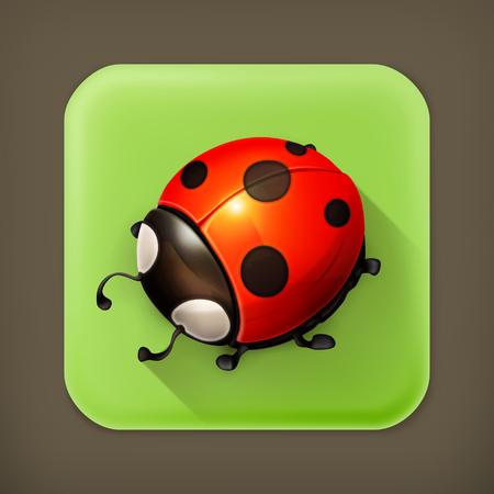 Ladybug long shadow icon Vector