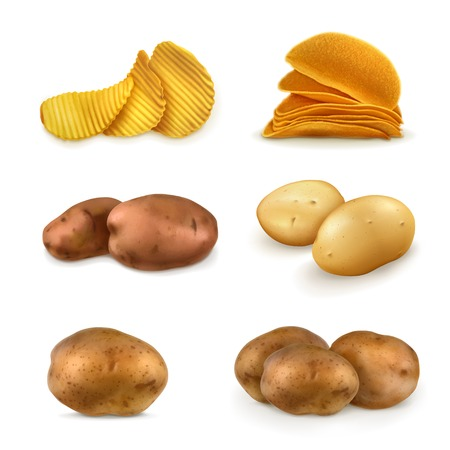 Potatoes vector set Illustration