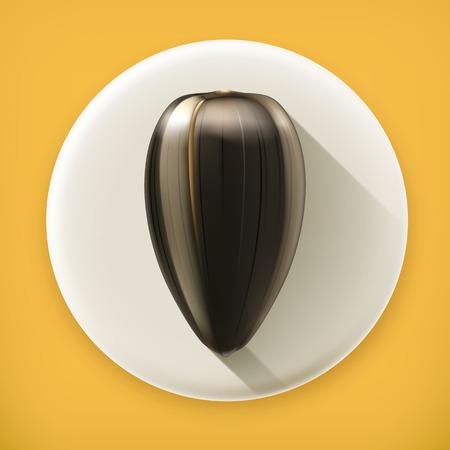 graine tournesol: Graines de tournesol m�r, ombre vecteur ic�ne