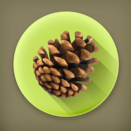siberian pine: Pine cone, long shadow vector icon Illustration