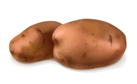 raw potato: Potatoes, vector illustration