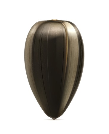 semillas de girasol: Semilla de girasol maduro, vector detallada Vectores