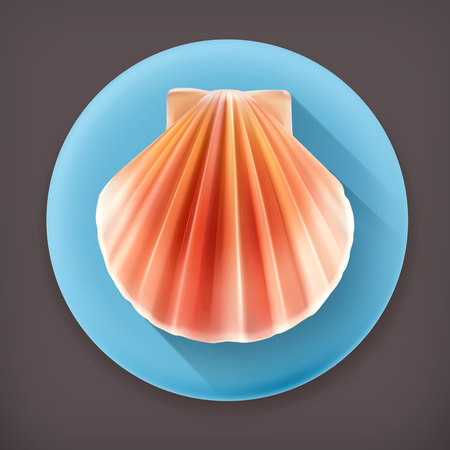 Seashell long shadow vector icon Vector