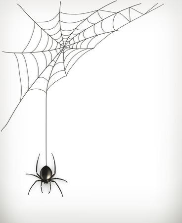 viuda: Tela de ara�a del vector