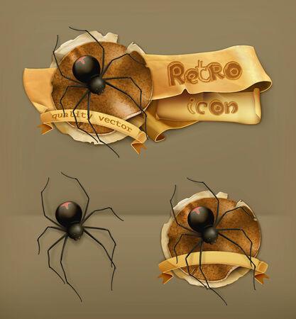 10eps: Spider vector icon