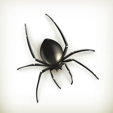 spidery: Spider vector