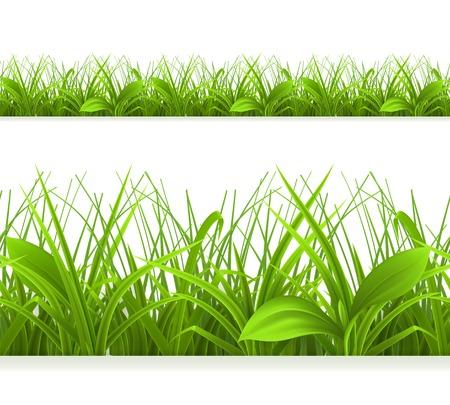grass blades: Spring green grass, seamless border. Detailed vector illustration