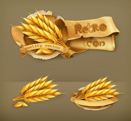 bran: Wheat, retro vector icon
