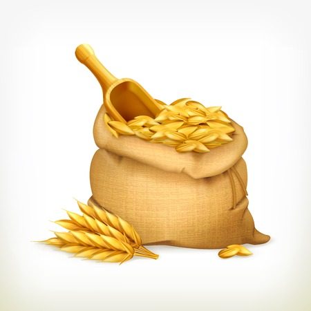 oat: Ears and wheat bag, isolated illustration