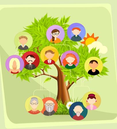 arbol genealógico: Árbol genealógico Vectores