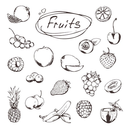 pomegranate juice: Fruits and berries, sketches of icons set