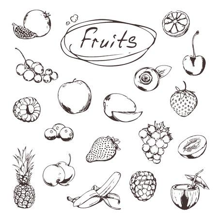 mango fruta: Frutas y bayas, bocetos de iconos conjunto