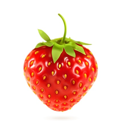 Ripe strawberry, vector illustration Ilustracja