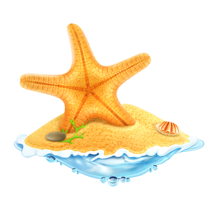 sea star: Starfish in the sand, vector illustration