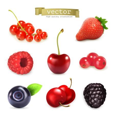 arandanos rojos: Bayas dulces, ilustración vectorial conjunto de alta calidad