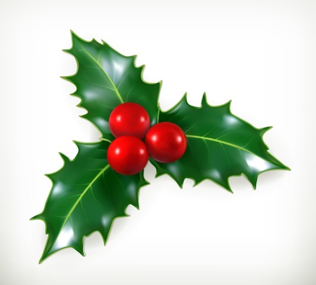 christmas holiday: Holly, traditional Christmas decoration vector icon