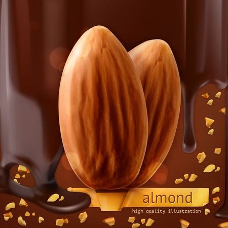 chocolat d�goulinant: Amandes, vecteur de fond Illustration