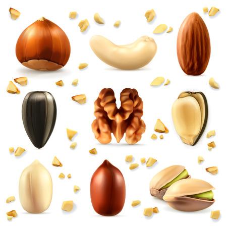 botanas: Nueces, icono conjunto de vectores