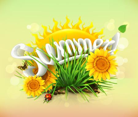 girasol: Verano, tiempo de vacaciones y viajes, el sol y un poco de hierba, girasoles, una mariquita y la mariposa en el jard�n, fondo universales