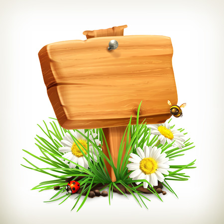 wood sign: Spring, time for a picnic, wooden sign in a grass, flowers of camomile, a ladybug and a bee in the garden, vector icon, an universal frame showing the process of springtime