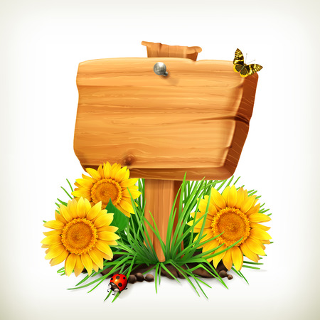 fields: Signboard with sunflowers, ladybug and butterfly on a white background, vector icon, an universal frame for advertising in the summertime Illustration