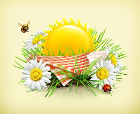 mariquitas: Verano, tiempo para un picnic