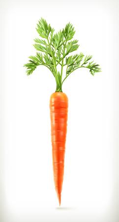 a carrot: Cà rốt tươi trẻ, thực phẩm sức khỏe, biểu tượng vector