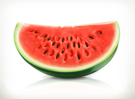 Slice of watermelon, summer fruit, vector icon Illustration
