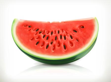 Slice of watermelon, summer fruit, vector icon Illustration