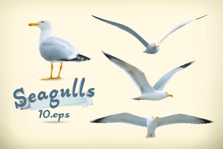 flights: Sea gulls vector icon set Illustration