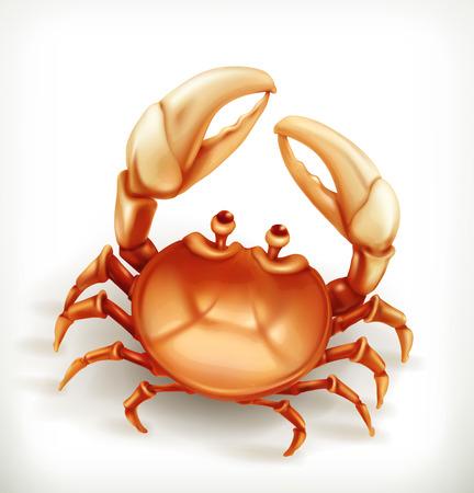 cangrejo: Cangrejo divertido, icono del vector
