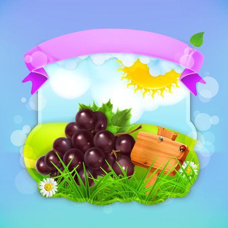 grape fruit: Fresh fruit label grape, vector illustration background for making design of a juice pack, jam jar etc Illustration