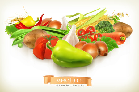 vegetables on white: Harvest juicy and ripe vegetables vector illustration isolated on white