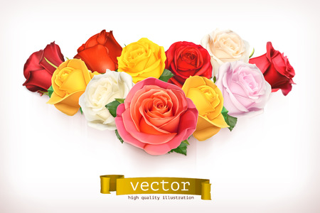 roses petals: Bouquet of roses, vector illustration isolated on white