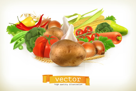 vegetables: Harvest juicy and ripe vegetables vector illustration, isolated on white